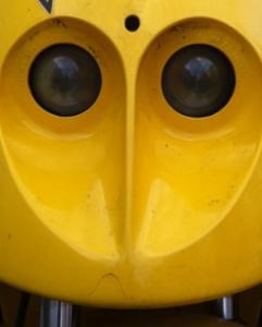 GesichtRoller